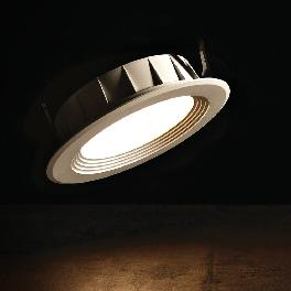 ColoRex Down Light 4 inch 7W
