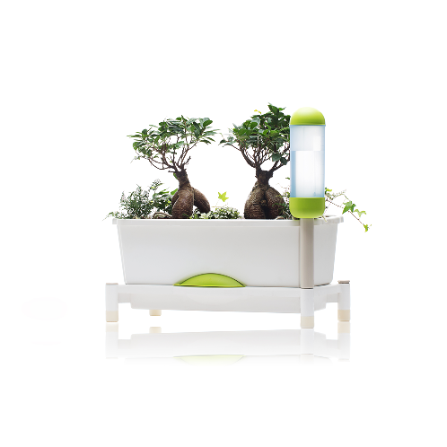 Smart Grow | www.koreaflowerpots.com, flower pots, fuctional flower pots, plastic pots, functionalflower pots, vegetable pots, office flower post, unique flower pots, balcony plant pots,color plant pots, planted flower pots, diy terracotta plant pots, Korea pots