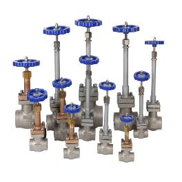 "Cryogenic Globe Valve(10A~50A(3/8""~2""); 10A, 15A, 20A, 25A, 32A, 40A, 50A) for LNG ship storage tank"