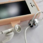 Electromagnetic wave filter for earphone