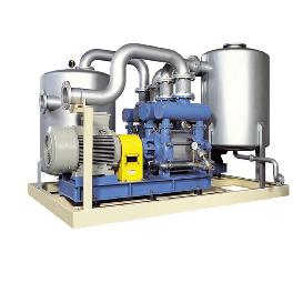 Water-closing type vacuum pump