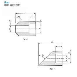 Korea Excellent Steel Stainless Various Types Boss Forged Fittings (ASME B16.11,MSS-SP)