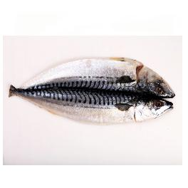 Hwanggi-Hamcho salted mackerel