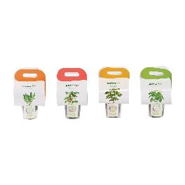 Seedmo® Take-out Garden