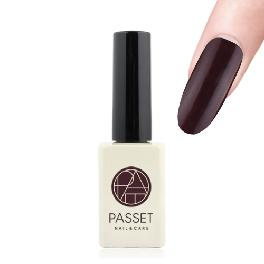 Passet gel nail varnish high quality basic 3 step nail art uv/led gel polish BA001