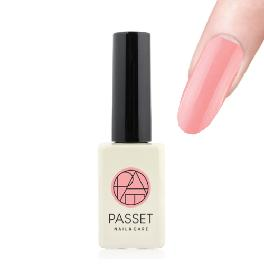 Passet gel nail varnish high quality basic 3 step nail art uv/led gel polish SS002