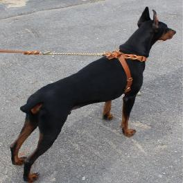 Twist leather harness I type(Big dog)