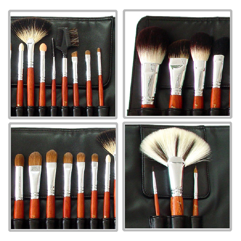 Bonita Makeup Professional Brush Set