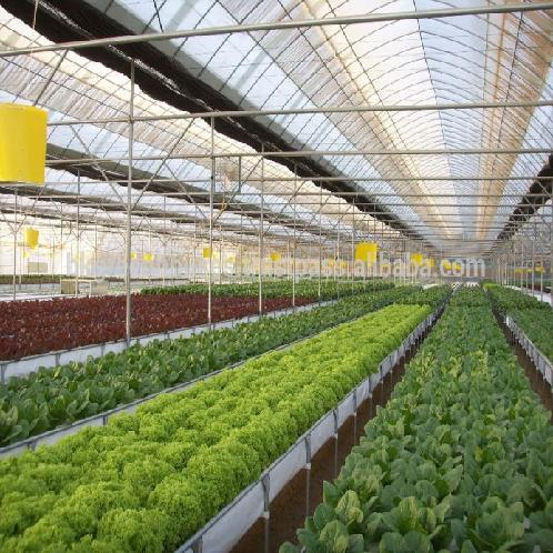 Greenhouse for Agriculture Hydroponics | Greenhouse for Agriculture Hydroponics
