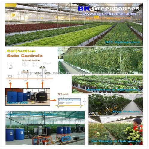Greenhouses for intensive production | Greenhouses for intensive production