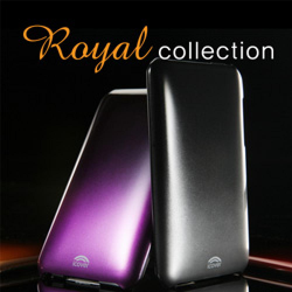 iPod Touch 2G Royal Case