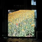 LED DISPLAY (PH 8mm type)