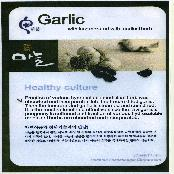 Garlic incorporated with medicinal herbs