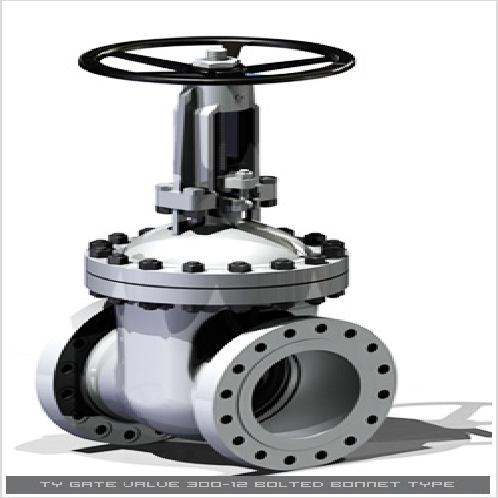 Bolted Bonnet | Gate Valves