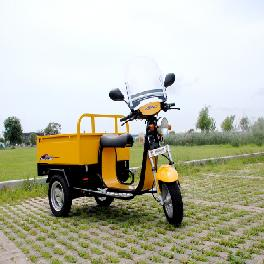 Electric Vehicle(SJE 1000)