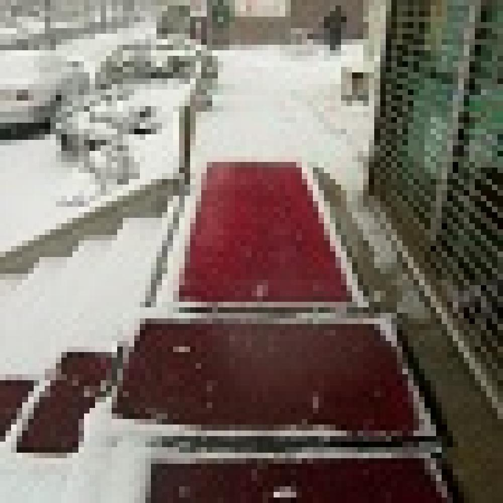 Snow Melting Entrance Mat