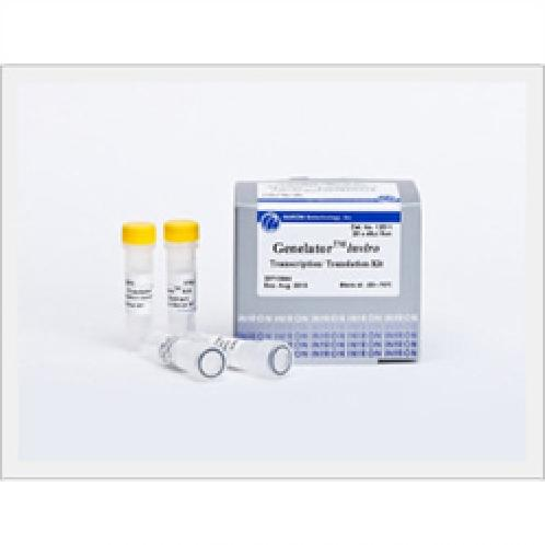 Genelator in Vitro Transcription/Translation Kit  | call free labeling kit,labeling kit,protein synthesis,Plasmid,Probe