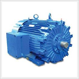 Explosion Proof Motors (Flame Proof D Type)