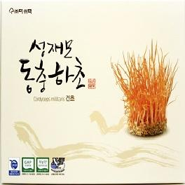 Sung Jae-Mo Cordyceps Militaris Dried body