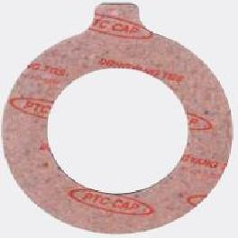 ANSI RING TYPE FLANGE PROTECT COVERING