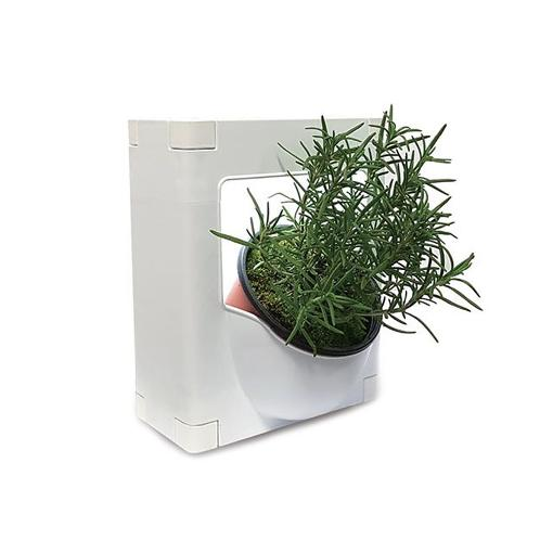 Any direction and space regardless of the quantity and space Connection Plant Pot Holder | Plant, Wall, Growing, cultivating, Device