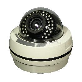 2MP IR Outdoor Vandalproof type network camera