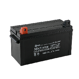 Tubular Maintenance Free battery
