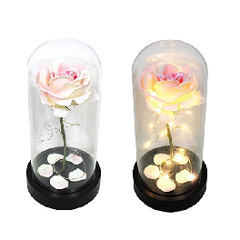 Handmade Preserved Real Rose Present Gorgeous Mood Light