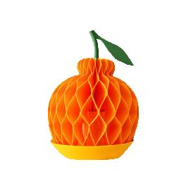 PIOZIO Fruit Humidifier Halla-bong Orange