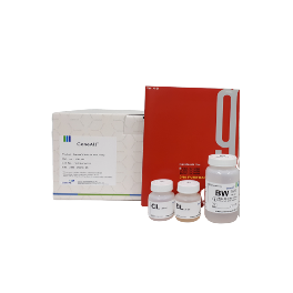 GeneAll ExgeneTM Clinic SV DNA extraction kit