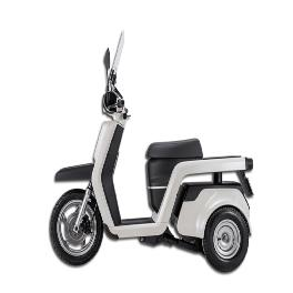 Electric Scooter EM3X